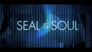 Seal - Soul Sizzle Reel [Official Music Video]