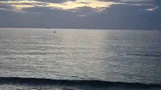 Ft. Desoto Beach St. Petersburg Florida