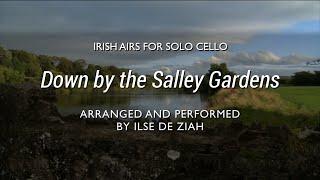 Down by the Salley Gardens - Irish Cello