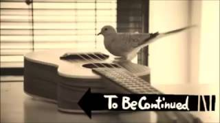 bird playing guitar to be continued jojo meme
