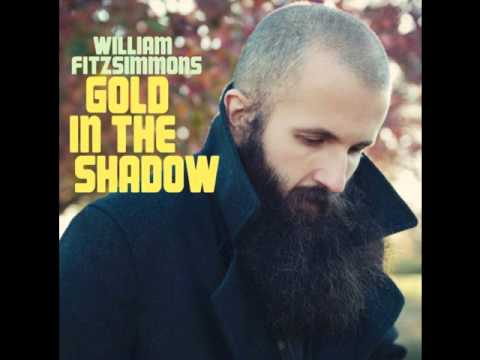 william-fitzsimmons-gold-in-shadow-goldintheshadow
