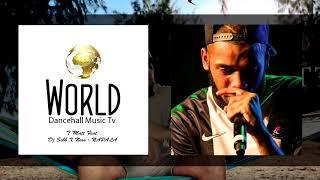 T Matt Feat Dj Sebb X Nero - NAPALA (Audio)