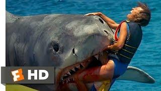 Jaws: The Revenge (5/8) Movie CLIP - The Banana Boat (1987) HD