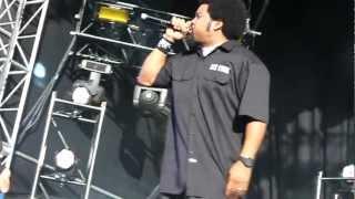 "ICE CUBE - ""CHECK YO SELF"" LIVE @ SUPAFEST 14/4/12"