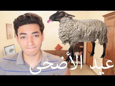 Souhail Echaddini - EP#9 : عيد الاضحى