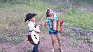 40 Cartas Los Luzeros De Rioverde