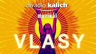 Divadlo Kalich - muzikál Vlasy