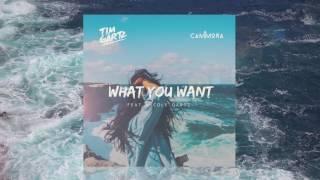 Tim Gartz & Cammora - What You Want (ft.Nicole Gartz) OFFICIAL TRACK
