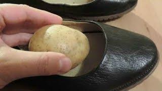 🍀 Cum te poate ajuta un cartof pus în pantofi | Eu stiu TV