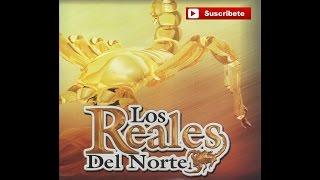 Los Reales del Norte - Pablo Navarro
