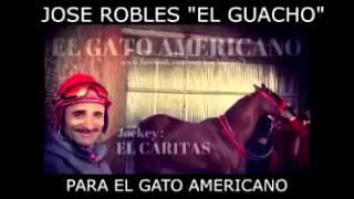 Jose Robles El Guacho - Para El Gato Americano