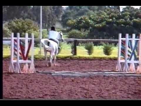 Liz Rides Horse in Morocco.wmv