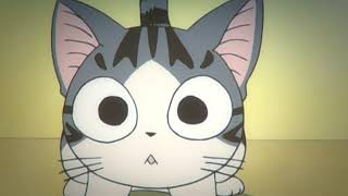 AF18 01 Mám doma kočku