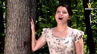 Luiza Spiridon - Asteptam marea zi