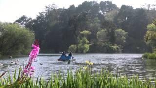 Peaceful Nature Music