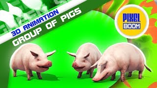 Green Screen Group of Pigs Animals Farm - PixelBoom