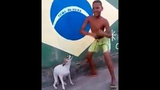 Brazilian dog dancing