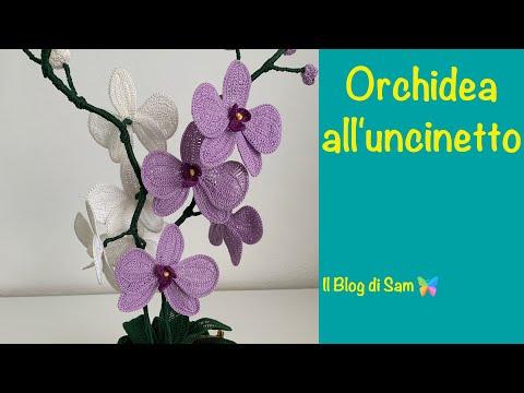 Come realizzare un 39 orchidea all 39 uncinetto fai da te mania - Come curare un orchidea in casa ...