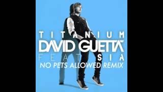 Titanium (No Pets Allowed Remix) - David Guetta & Sia