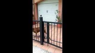 Laki abre la puerta