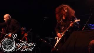 Sunflower Dead Live - My Mother Mortis -  Laconia, NH (May 3rd, 2017) Wiskey Barrel [3CAM-1080HD]