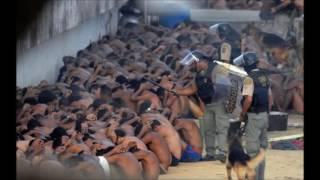 Direitos Humanos - Violação Sistema Penitenciario
