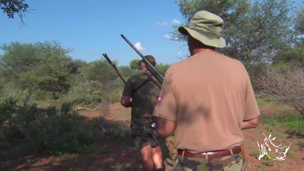 Últimos lances de The Hunter's Dream Safari