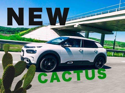 Citroen C4 Cactus Shine