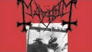 carnage-mayhem