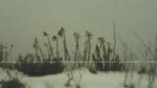 drew the architect - vōydeur [unofficial music video]