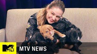 'Supergirl' Star Melissa Benoist Takes Our Super Puppy Challenge | MTV News