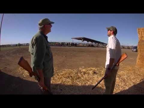 Video: Hunting with the Air Venturi Wing Shot   Pyramyd Air