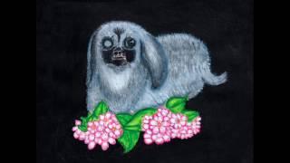 Guadalupe Plata - Perro de vieja