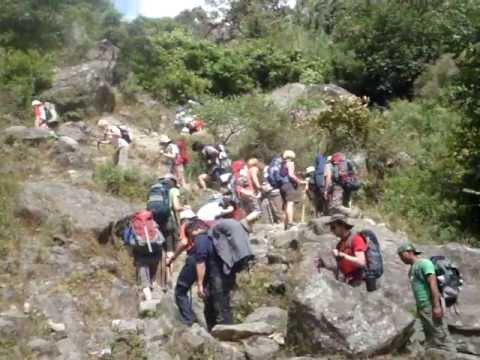 Trekkers On Hike