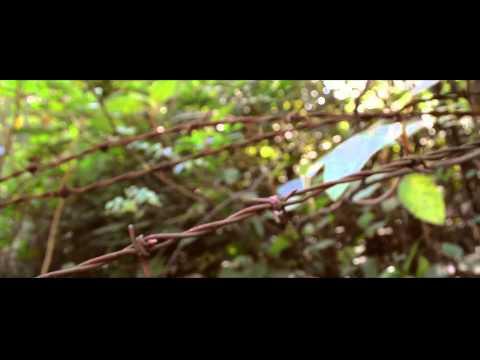 En La Eternidad de Alu Letra y Video
