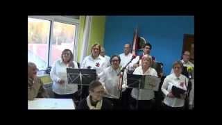 Grupo Coral e Instrumental «Flamingos»