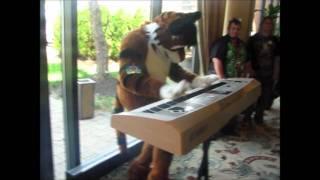 Randomness from IndyFurCon 2011!