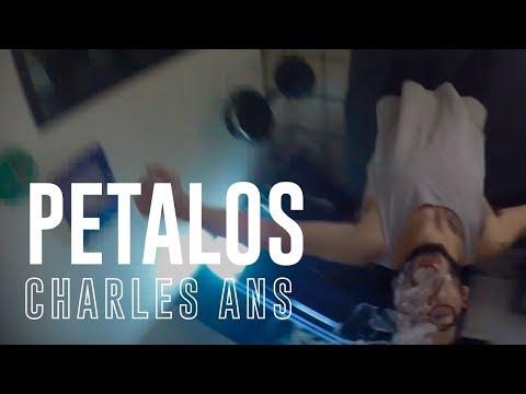 Petalos de Charles Ans Letra y Video