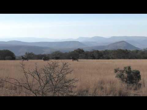 Jim Shockey's Bombazi Wilderness.m4v