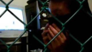documentário de um presidiário bossal