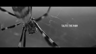 Taste the Pain Trailer (Enter the Void like)