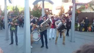 Bubamara Brass Band - Black Cat White Cat / в Москве