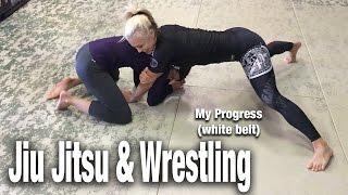 Jiu Jitsu Techniques & Takedowns