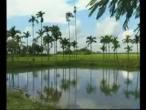 see Bangladesh  form kamrul,bhola .bd