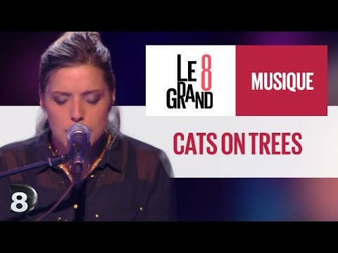 cats-on-trees-love-you-like-a-love-song-live-le-grand-8-d8