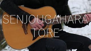 (Bakemonogatari OST) Senjougahara Tore - Fingerstyle Guitar Cover (FREE TABS)