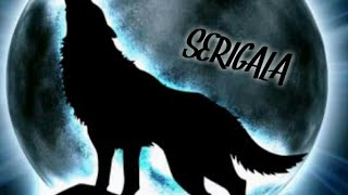Suara serigala