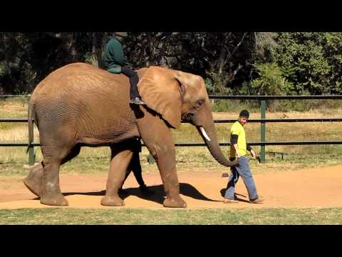 Explore and Discover South Africa