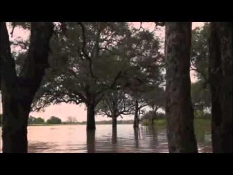 Luangwa River Camp – Luangwa River Safari | Zambia | Expert Africa