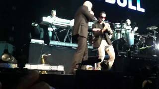 Pitbull en vivo HP PAVLLION
